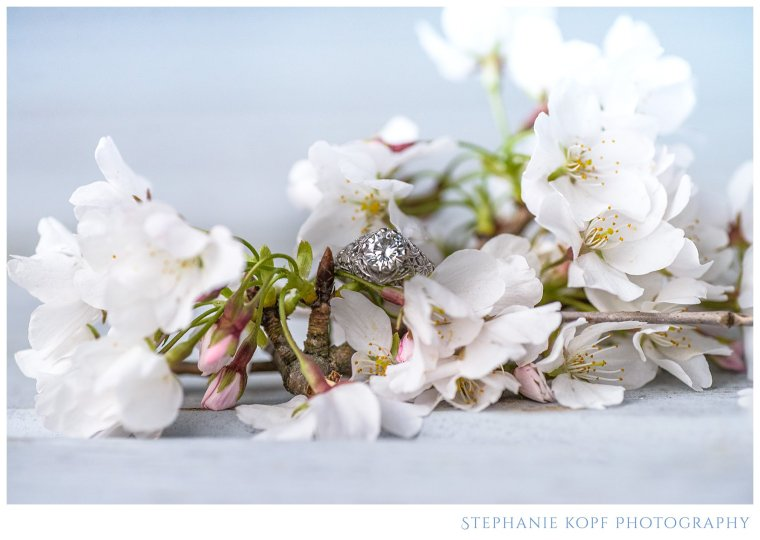 Stephanie Kopf Photography Virginia wedding and portrait photographer cherry blossom ring shot